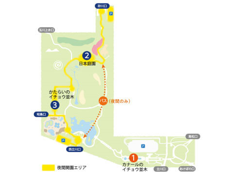 昭和記念公園イルミネーション(紅葉祭り)
