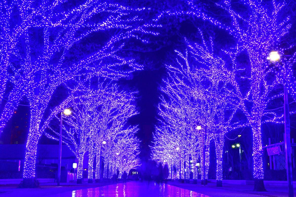 青の洞窟・渋谷イルミネーション場所など