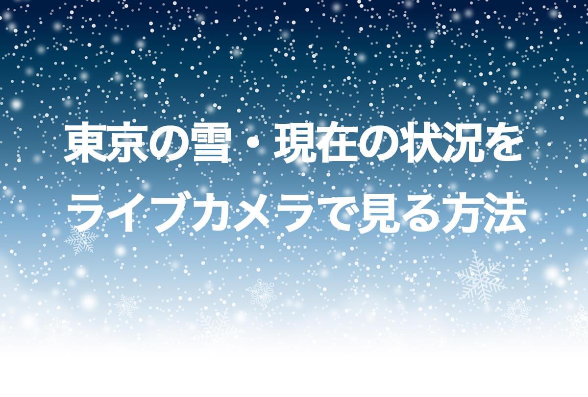 東京の雪・現在の状況